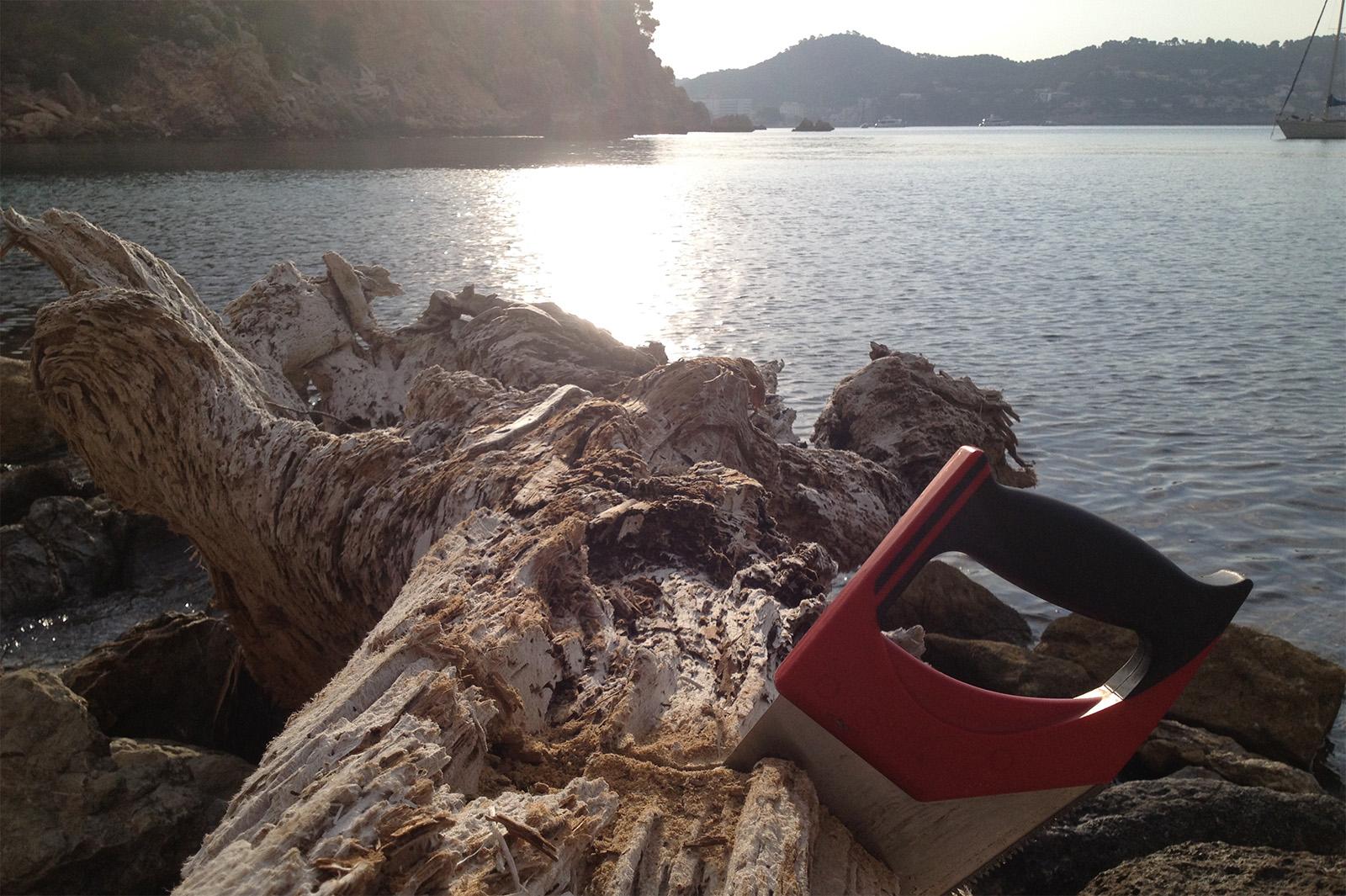 Driftwood at Mediterranean Sea