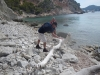 Driftwood at Mediterranean Sea wit deGroeger